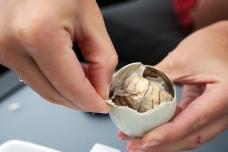 Fertilized duck embryo in Hong Kong