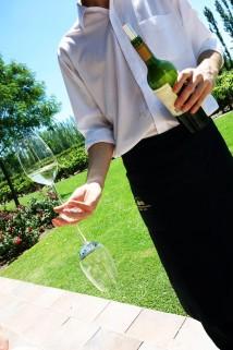 Wine Service at Bodegas Nieto Senetiner