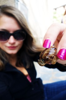 Caragols (snails) in the town of Porrera in Priorat