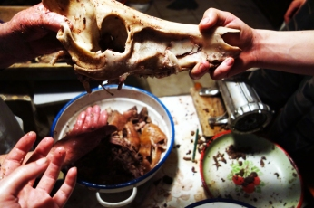 After all the meat is removed the skull is given to the dogs to gnaw on. A fantastic Christmas present for the canines.