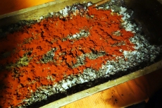 The ladies also add smoked paprika powder, which is sprinkled over the top of the ground innards.