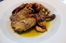 Octopus and Rabbit at La Cooperativa in Porrera