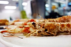 Langoustines at Can Flores in Blanes