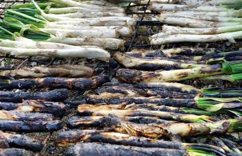 Calcots grilling