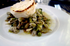 Fava beans, peas and artichokes with ricotta